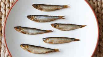 Überfischung in der Ostsee: Sprotten kann man (noch) essen