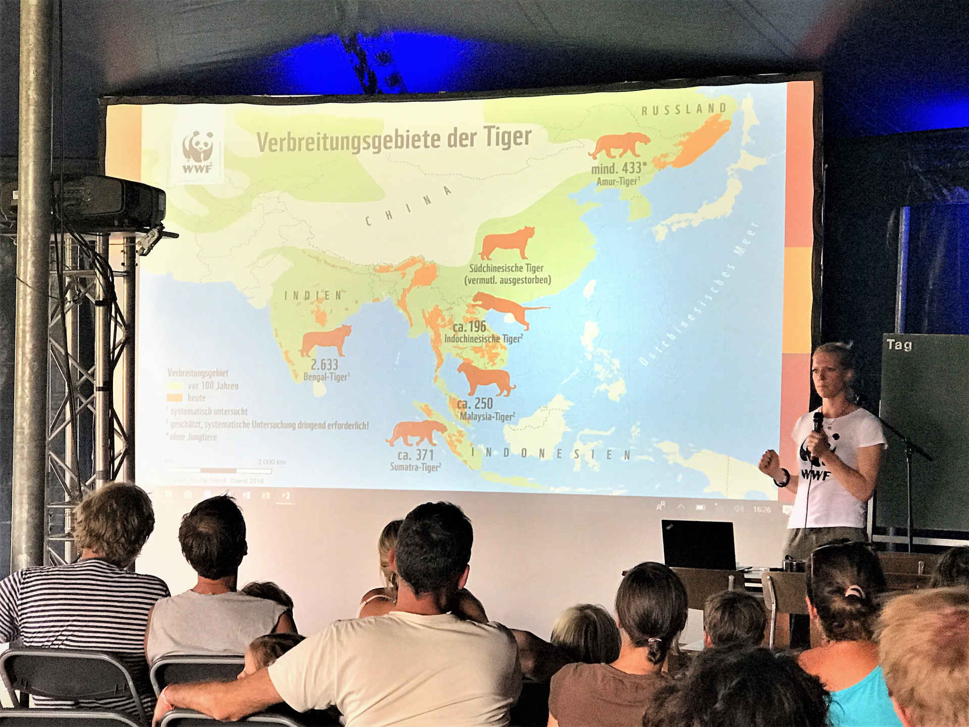 A Summer`s tale: Kathrin Samson erzählt Tiger Tales