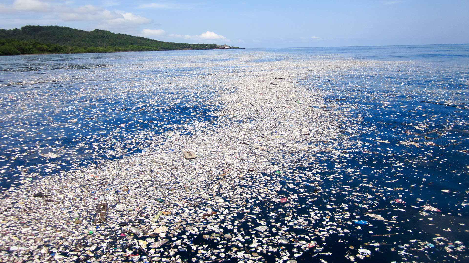Plastik Müllteppich