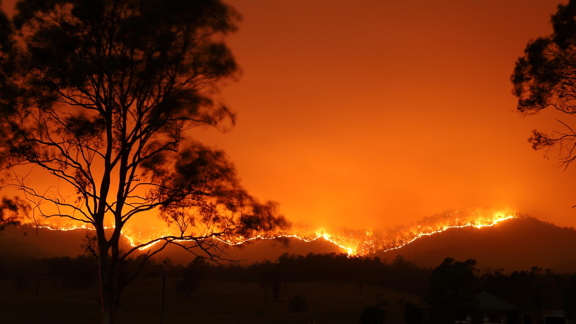 Die Klimakrise ist für die Feuer in Australien verantwortlich und nicht Brandstiftung. © Adam Dederer / WWF Australien