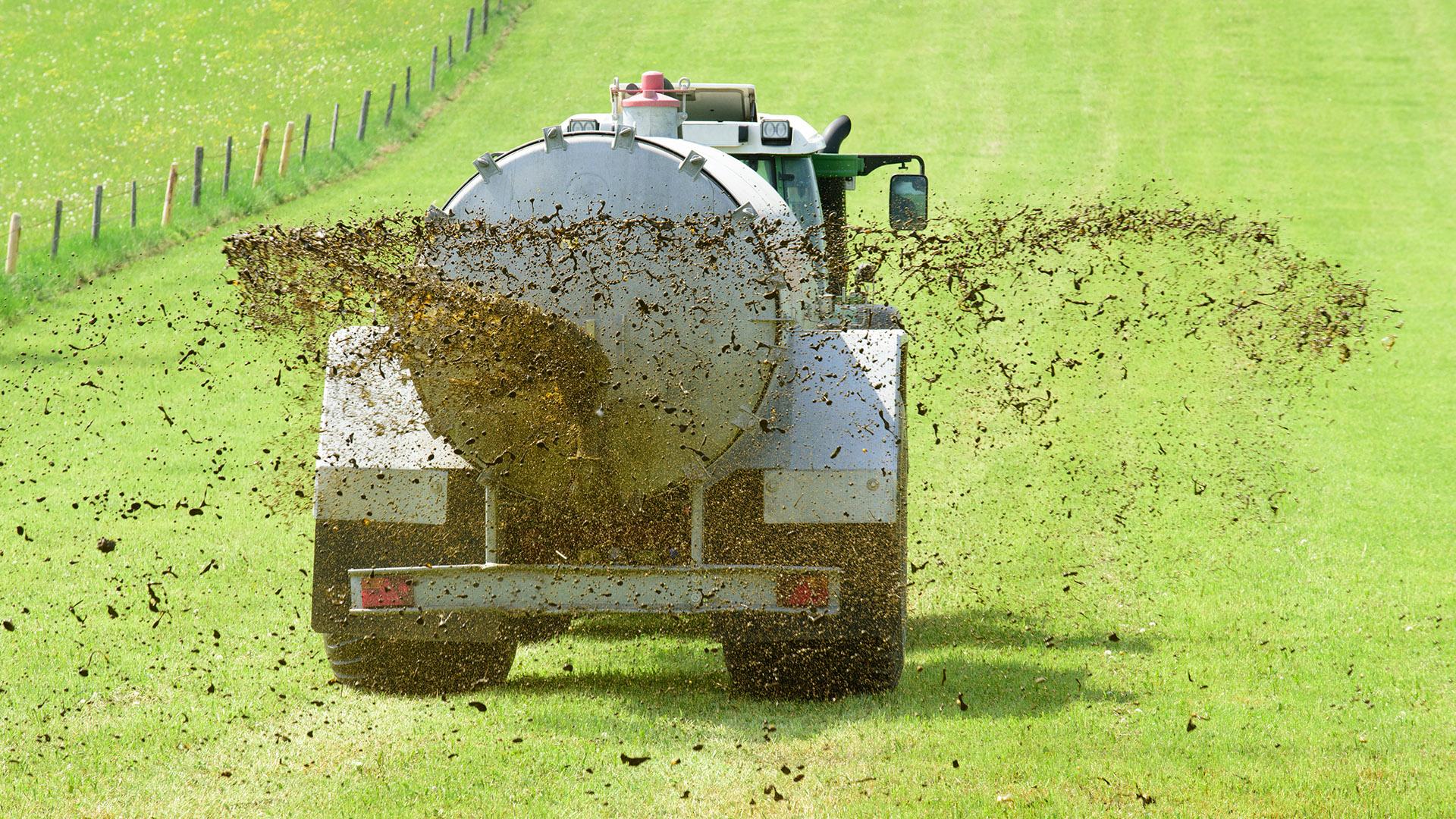 Bei der Überdüngung mit Gülle entsteht unter anderem Lachgas. © iStock Getty Images