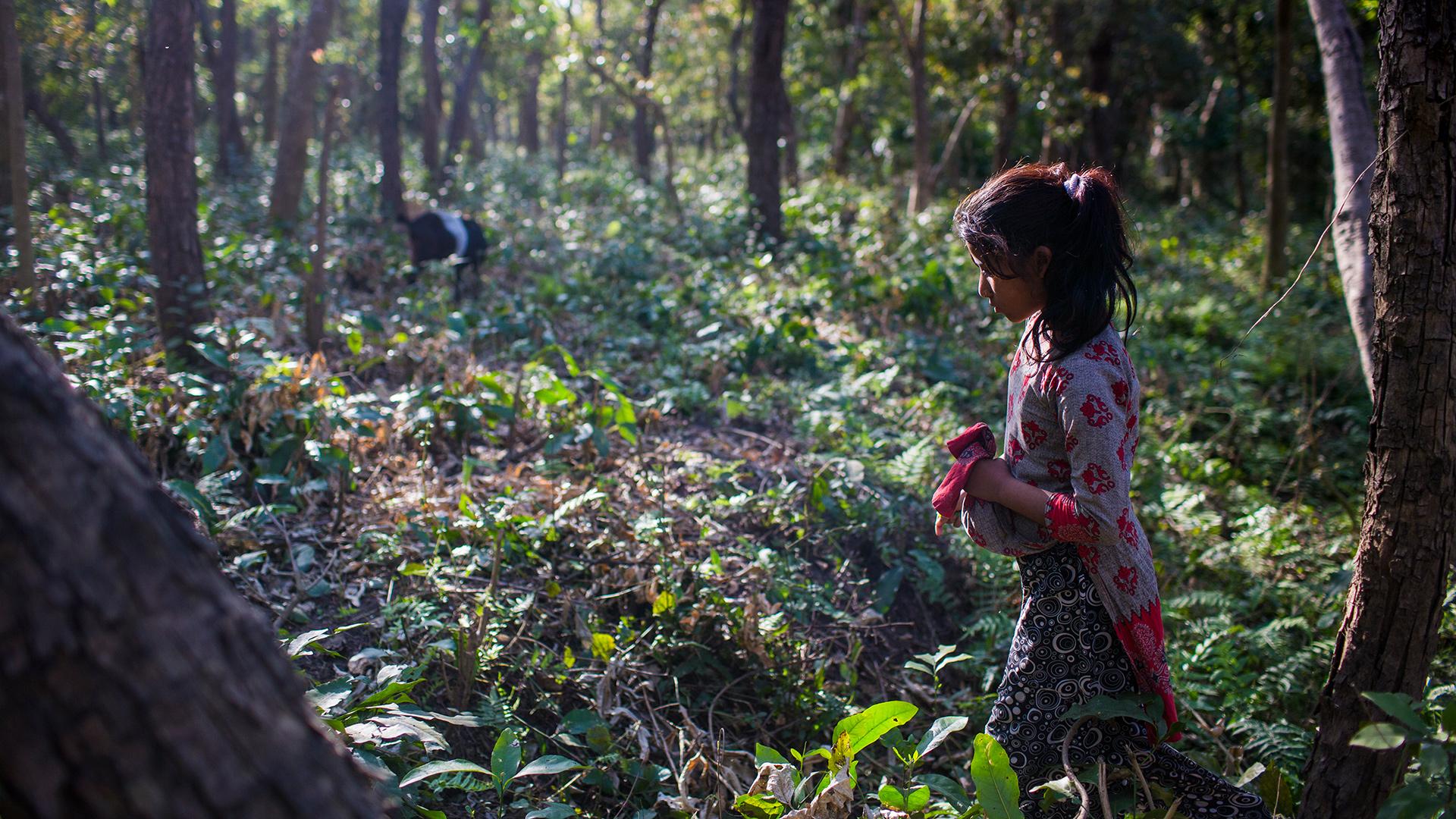 Starke Frauen: Mädchen im Gemeindewald, Khata Korridor, Nepal