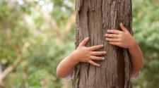 Urlaubstipps: Baum umarmen