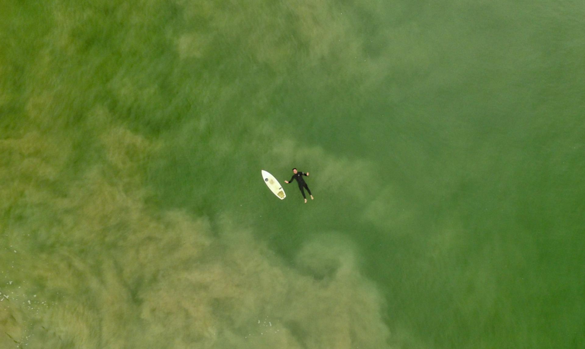 Surfen und Umwelt: Surfer treibt in Meer von Algen