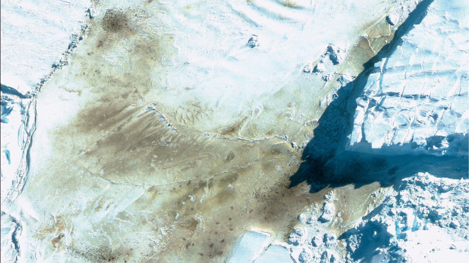 Satellitenaufnahme der typischen, rotbraunen Guano-Flecken, die Pinguine hinterlassen, zeigen: Es gibt in der Antarktis mehr Pinguin-Kolonien als gedacht!