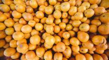 Berge von Zitrusfrüchten