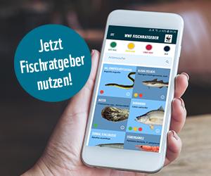 Fischratgeber-App für Android und iOS © WWF