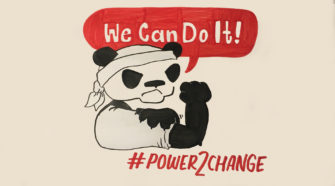 Power2change Power to x Wasserstoff Panda