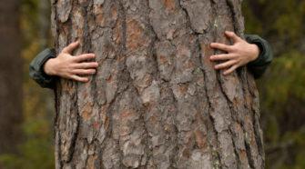 Mensch umarmt Baum