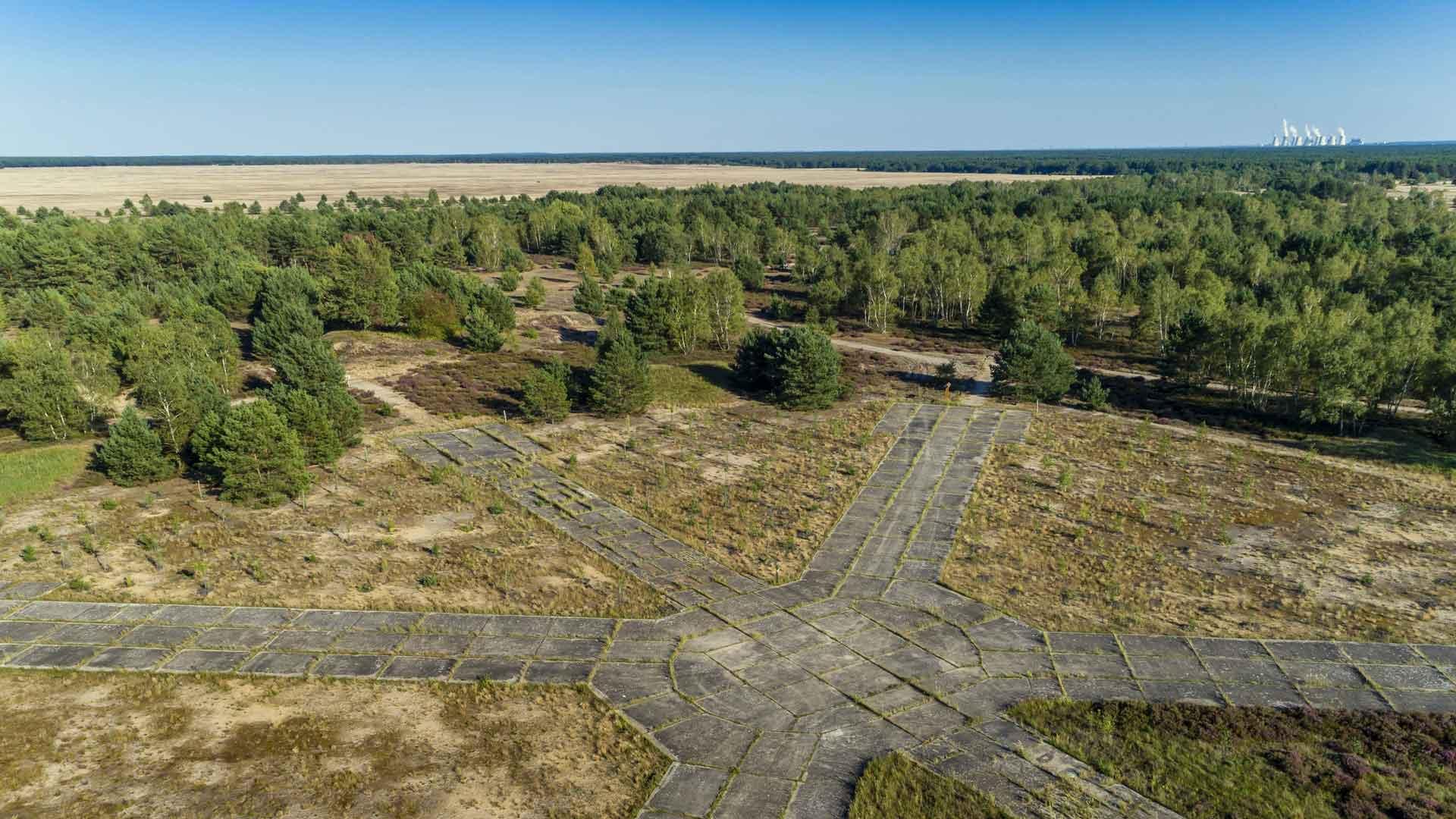 Wildnis in Deutschland: Lieberoser Heide in Brandenburg