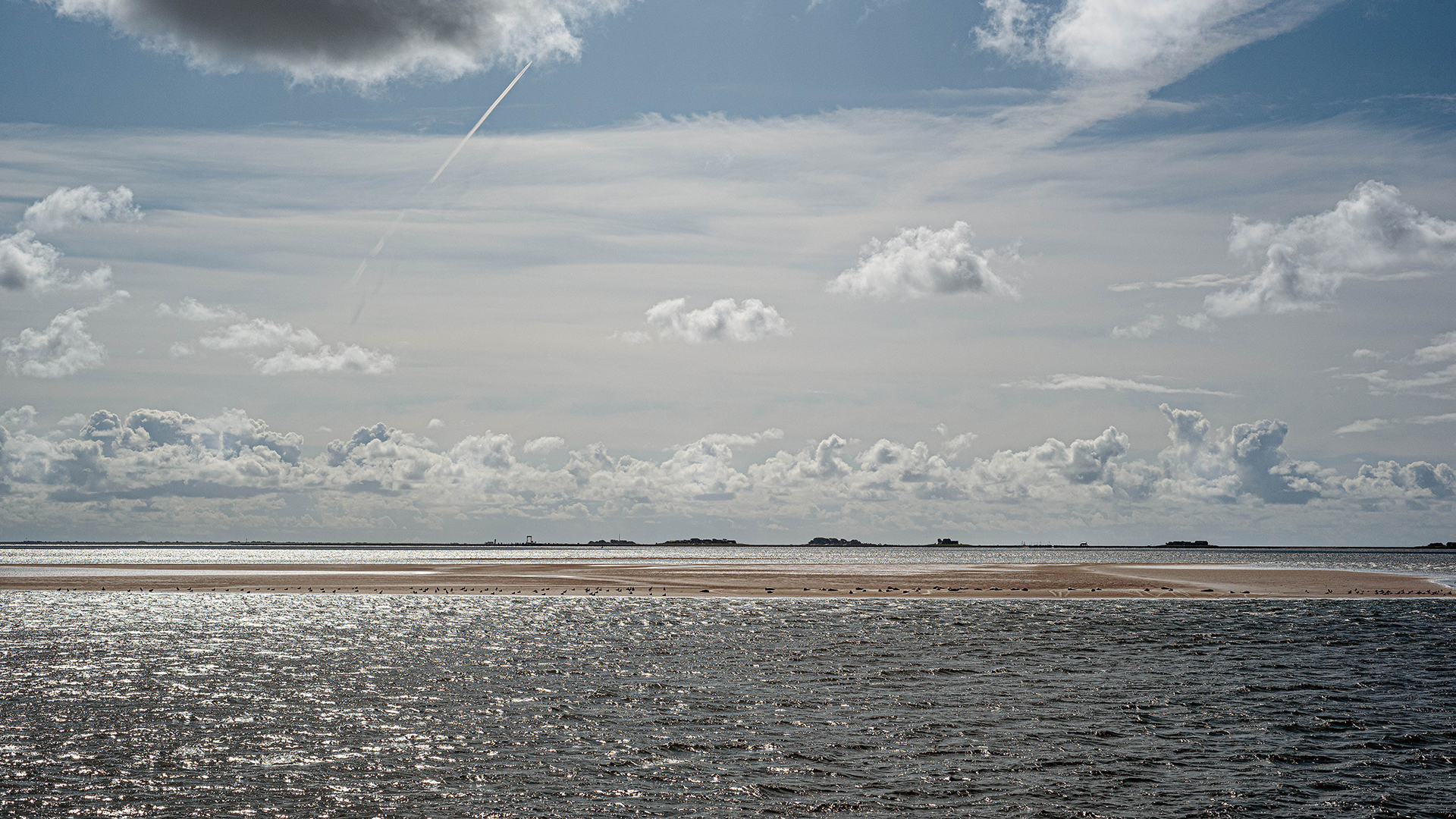 Meere retten: Blick auf das Wattenmeer