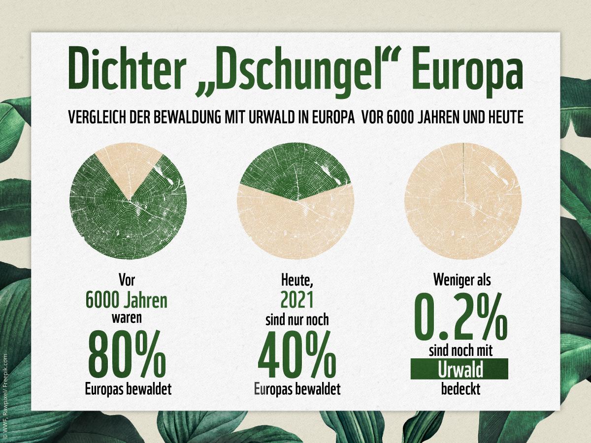 Vergleich der Bewaldung Europas heute und vor 6000 Jahren
