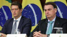 Brasilien Umweltschutz: Salles und Bolsonaro