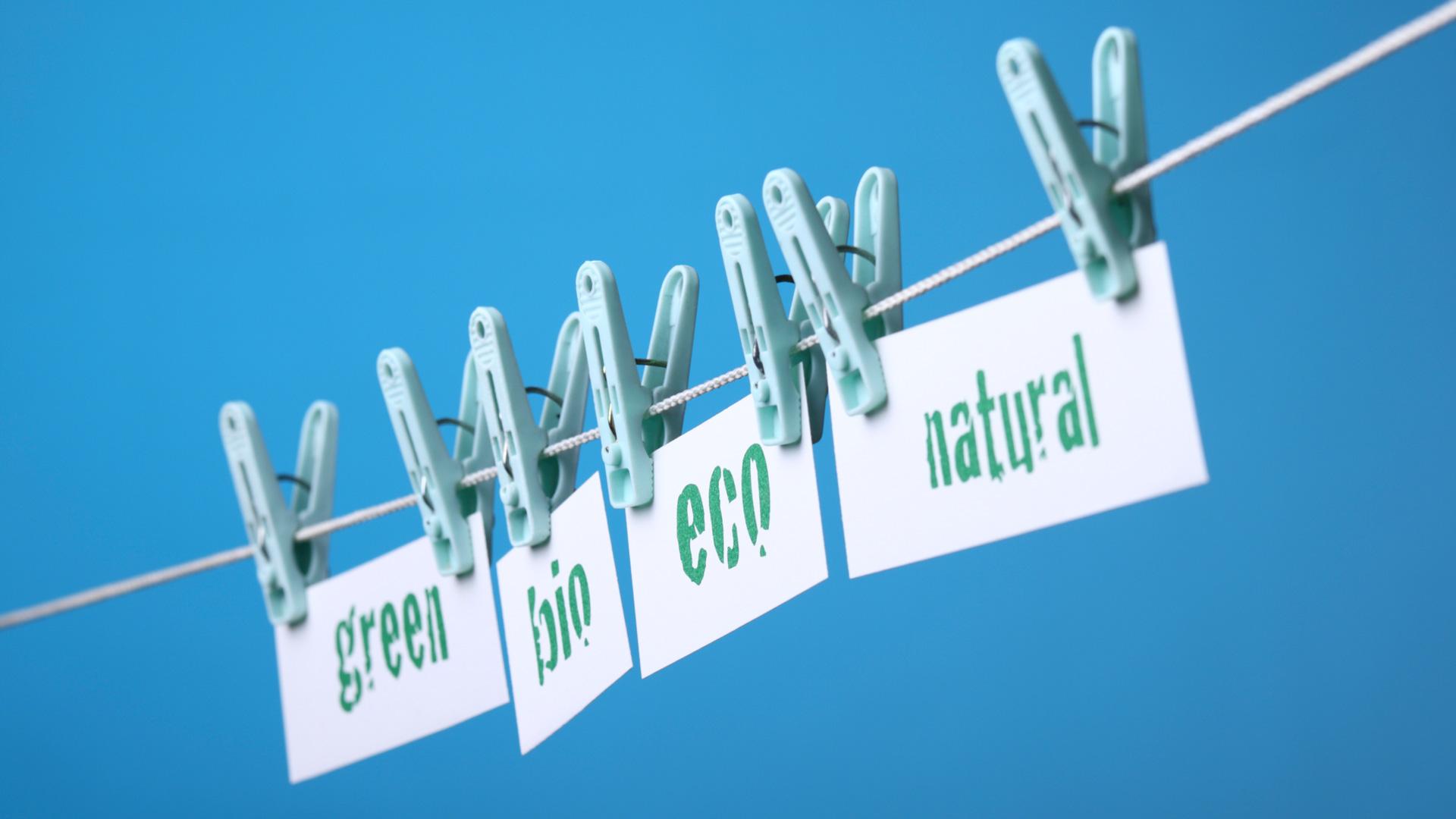 EU-Taxonomie: Bestimmen, was nachhaltig ist zur Beurteilung für Green Investments