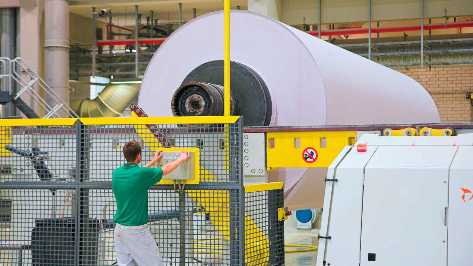 Weltwald Wald Papierherstellung
