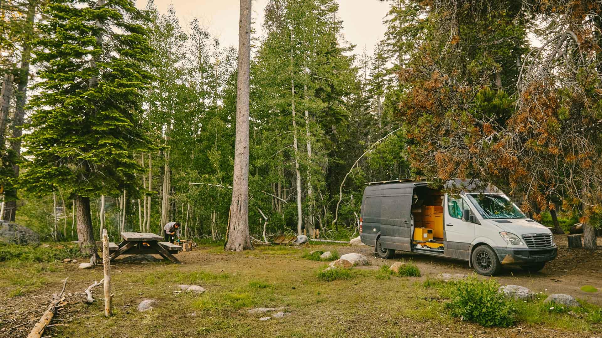 Weltwald Camper im Wald