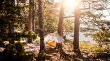 Weltwald Wald Camp