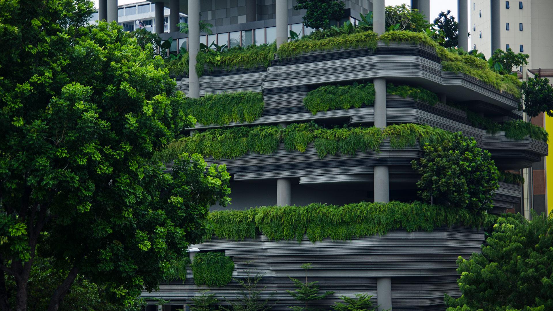 Finanzen und Finanzpolitik: Begrüntes Hochhaus