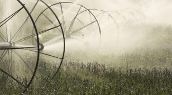 Bewässerung Landwirtschaft